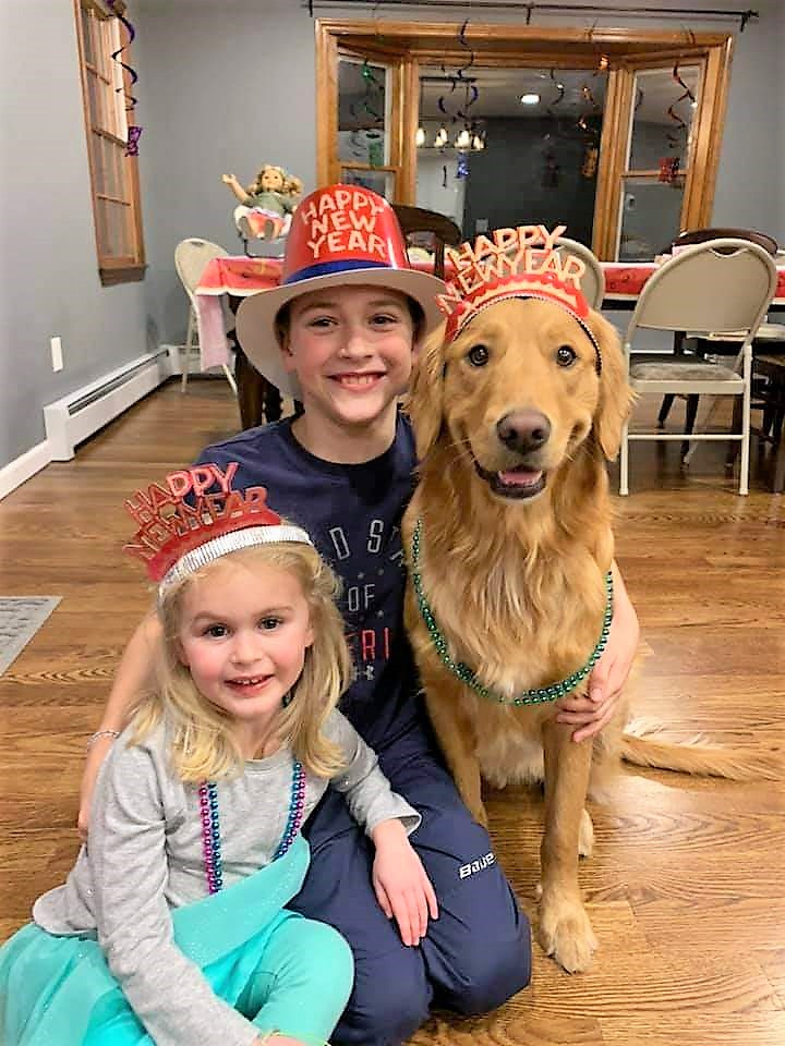 Gryffin (Shire x Jack) celebrating New Years with his best friends)